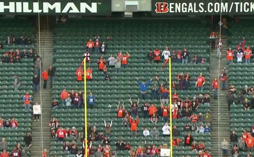 Bengals Optimism Postponed
